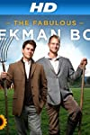 The Fabulous Beekman Boys (2010)