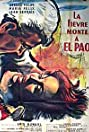 Fever Mounts at El Pao (1959) Poster