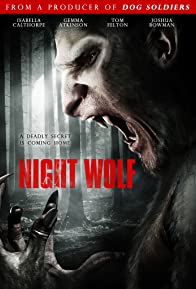 Primary photo for Night Wolf