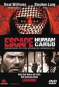 Primary photo for Escape: Human Cargo