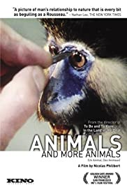 Animals and More Animals Poster