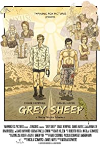 Primary photo for Grey Sheep