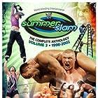 Steve Austin, Jeff Hardy, Shawn Michaels, Dwayne Johnson, Paul Levesque, Rob Van Dam, and Brock Lesnar in Summerslam (2002)