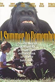A Summer to Remember Poster