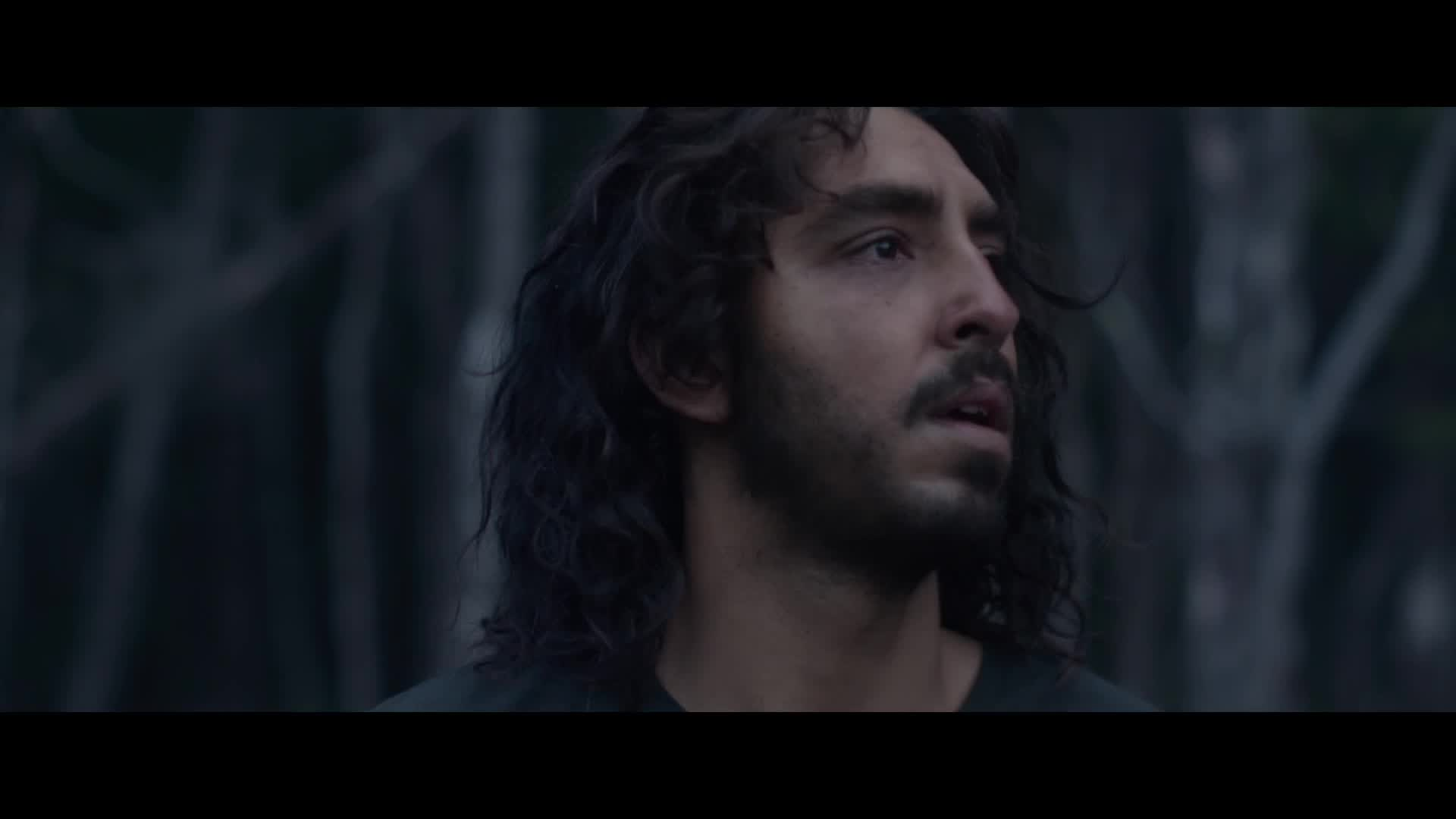 lion 2016 online english subtitles