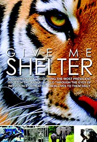 Primary photo for Give Me Shelter