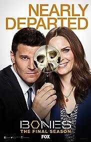 LugaTv   Watch Bones seasons 1 - 12 for free online