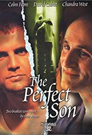 A Perfect Son(2000) Poster - Movie Forum, Cast, Reviews
