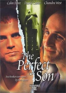 Direct download mkv movies The Perfect Son [480x320]