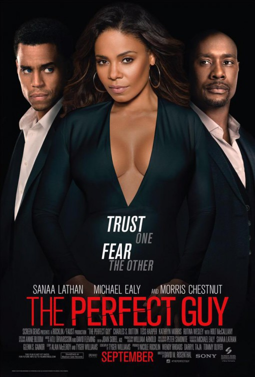 Morris Chestnut, Sanaa Lathan, and Michael Ealy in The Perfect Guy (2015)