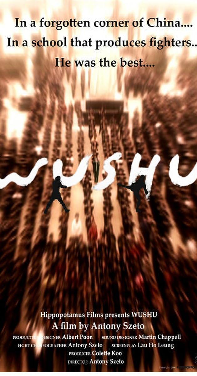 wushu dvdrip fr