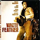 Robert Wagner in White Feather (1955)