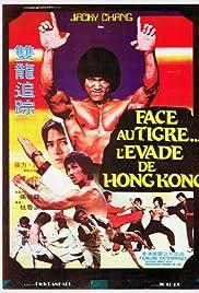 Bruce Lee's Dragons Fight Back () filme kostenlos