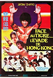 Bruce Lee's Dragons Fight Back Poster