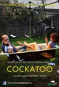 Primary photo for Cockatoo