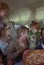 Die Partridge Family Nicht Facts about