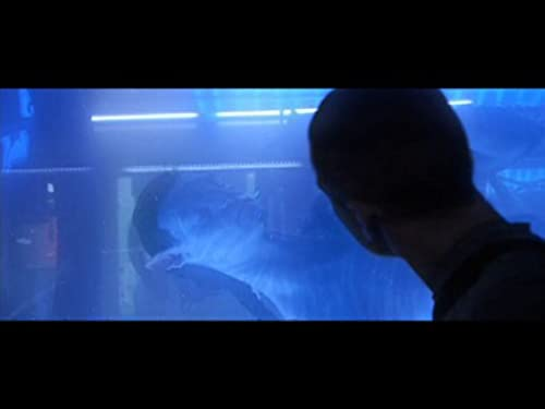 Avatar: Trailer #1