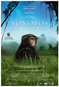 Primary photo for Bonobos: Back to the Wild