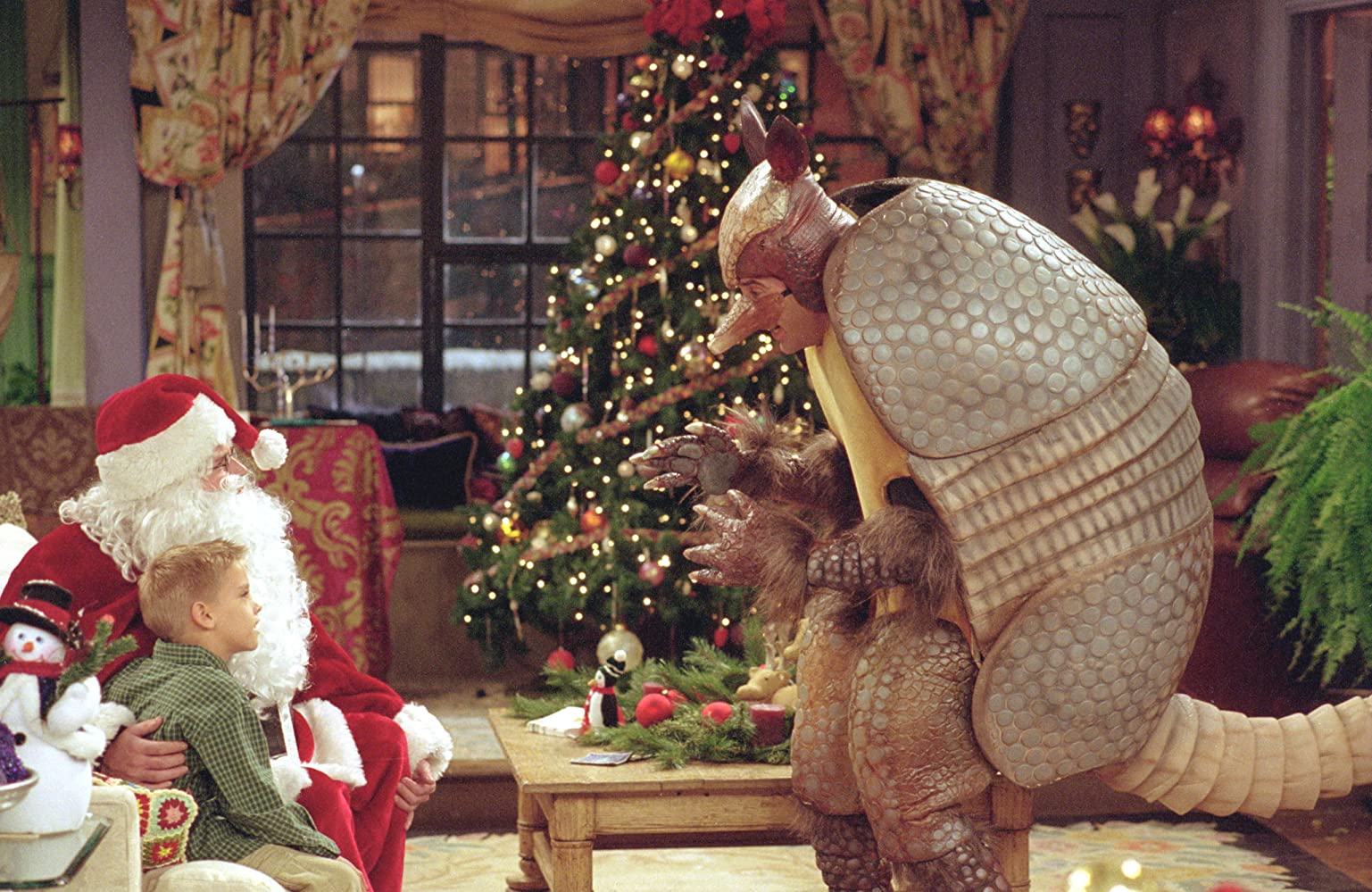 Image result for one with the Holiday Armadillo
