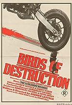 Birds of Destruction