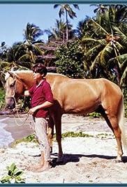 Cristobalito, the Calypso Colt Poster