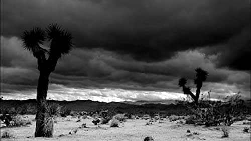 """""""A nuanced portrayal of an entire era."""" -- Artforum.  JOSHUA TREE, 1951 is the provocative and mesmerizing experimental portrait of an icon. Framed in a series of dreamlike, sometimes hallucinatory vignettes, the film draws on striking textures (velvety black-and-white 35mm, grainy bursts of color), highly stylized form, and the poetry of Arthur Rimbaud to question not only the established narrative of James Dean's life but also the process of star-making itself. Written and directed by Matthew Mishory."""