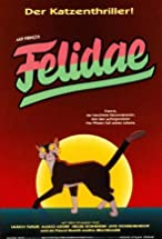 Primary image for Felidae