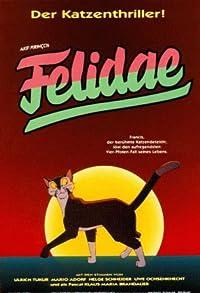 Primary photo for Felidae