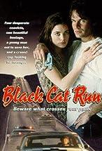 Primary image for Black Cat Run