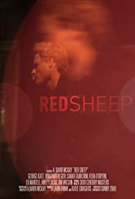 Primary photo for Red Sheep