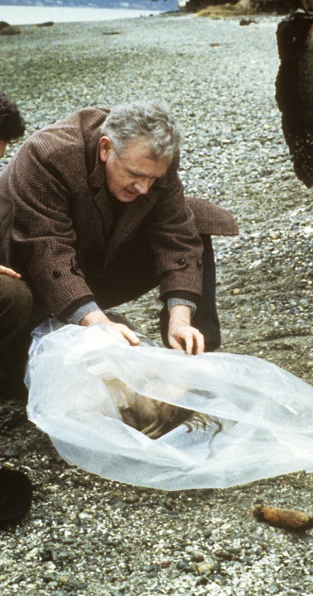 Twin Peaks (season 3) - Wikipedia