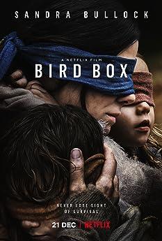 Sandra Bullock in Bird Box (2018)