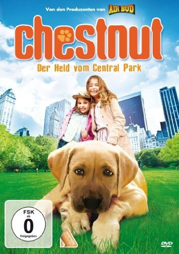 Chestnut Hero of Central Park 2004 Hindi Dual Audio 720p HDRip 700MB Download