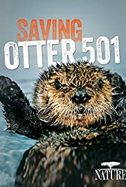 Saving Otter 501 Poster