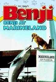 Benji Takes a Dive at Marineland Poster