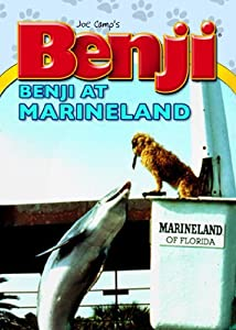 Watch free videos movies Benji Takes a Dive at Marineland [640x960]