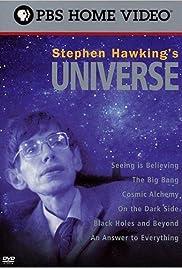 Stephen Hawking's Universe Poster