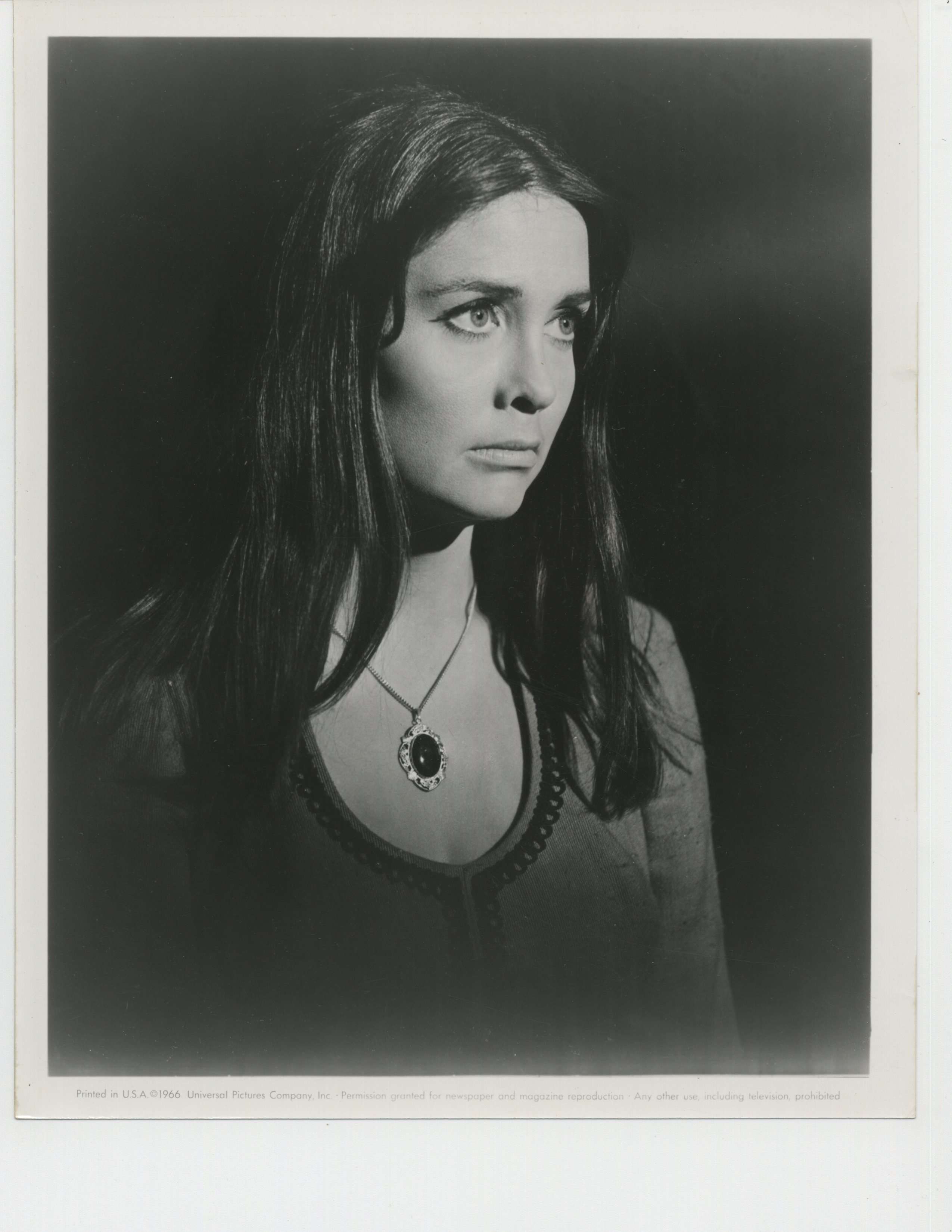 Anjanette Comer in The Appaloosa (1966)