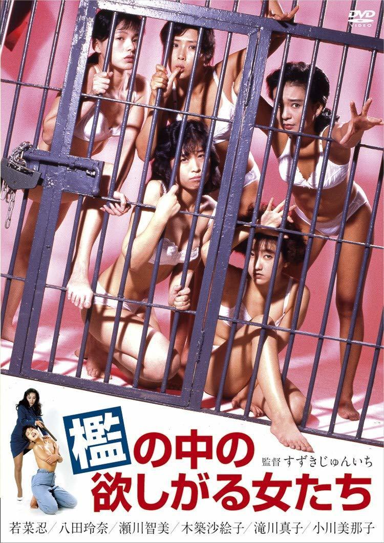 Ori no naka no hoshigaru onnatachi (1987)