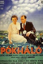 Pókháló Poster