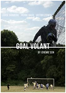 Subtitles for downloaded movies Goal volant [480x854]