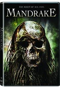 Primary photo for Mandrake