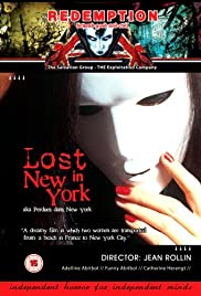 Lost in New York Poster