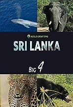 Sri Lanka - Big Four