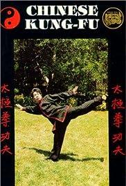 Shaolin Long Arm Poster