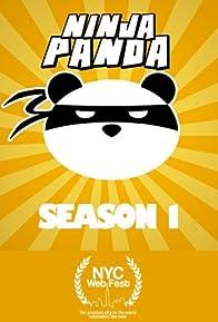 Primary photo for Ninja Panda