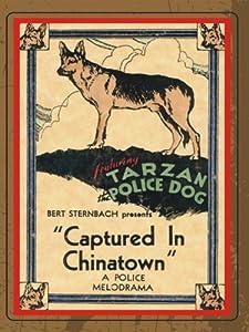 Watch free movie links Captured in Chinatown [1920x1280]