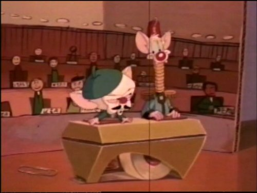 pinky and the brain pinkys turnyour friend global domination tv episode 1998 imdb