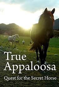 True Appaloosa (2015)