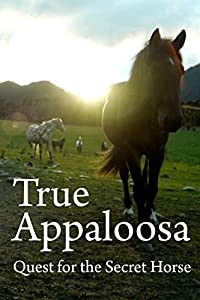 Psp mp4 movie downloads True Appaloosa [UHD]